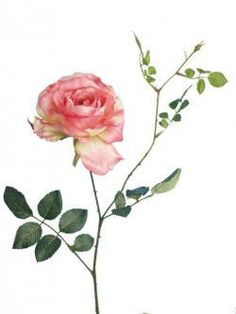 Stunningly realistic Artificial Rose Spray, £3.99  A fuller version of our standard short stem rose, this beautiful spray has a fully open bloom that creates an opulent and bountiful look.   Looks amazing mixed with our other roses to create a natural looking display with different levels of bloom.  Also fantastic for weddings and decoration.
