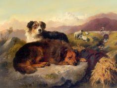 oude hondenrassen - Google zoeken