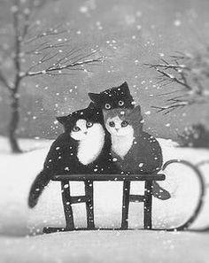 chats sous la neige
