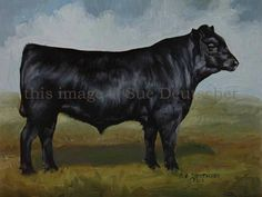Black Angus cattle cow art print 11x14 signed matted farm ranch. $22.00, via Etsy.