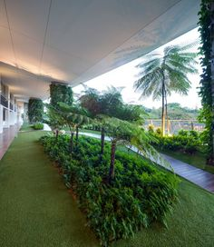 Image 13 of 16 from gallery of Jardin / DP Architects. Courtesy of DP Architects Dp Architects, Covered Garden, Simple Pleasures, Environment, Sidewalk, Construction, Landscape, Gallery, Singapore