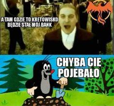 A tu gdzie to kretowisko będzie stał mój bank Text Memes, Dankest Memes, Jokes, Funny Images, Funny Photos, Funny Lyrics, Polish Memes, Weekend Humor, Funny Mems