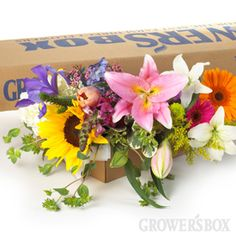 DIY Wedding Flowers: Mixed Flowers (small box)  This package of wedding flowers has a beautiful blend of 10 stems of each of the following flowers: Asiatic Lilies, Oriental Lilies, Tulips, Gerbera Daisies, Iris, Large Sunflowers, Snapdragons, Solidago and Bupleurum.  Let your creative side run wild - whether you are decorating for a wedding, event or something as casual as a backyard barbecue!