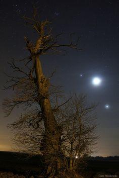 La Lune, Jupiter et Vénus réunies sur une photo