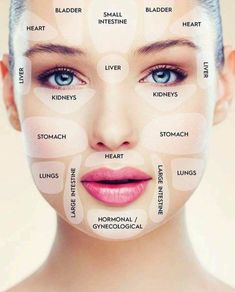 Face Mapping: What Your Skin Says About Your Health - Ideal Shape Body Home Beauty Tips, Beauty Hacks, Gesicht Mapping, Face Mapping, Acne Causes, Body Organs, How To Get Rid Of Acne, Acne Treatment, Skin Treatments