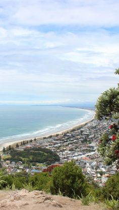 View from the summit of Mount Maunganui - NZ