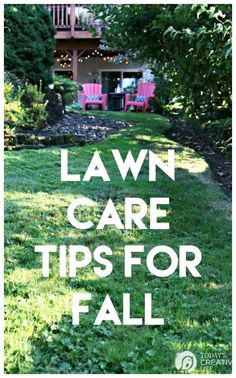 Gardening Spring Lawn Care Tips - Winter Recovery Outdoor Lighting Tips For Your Home The perfect li Fall Lawn Care, Lawn Care Tips, Diy Spring, Lawn Care Business, Yard Maintenance, Grass Seed, Diy Garden Projects, Garden Ideas, Garden Care