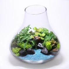 This is a pretty twist on a terrarium.  Love the colored sand.