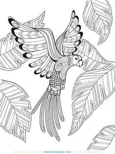 voegel-malvorlagen-wunderschoene-ausmalbilder-dekoking-com