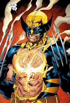 ✭ Wolverine by Stuart Immonen