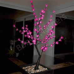 51f5d0c91e285 LED Light Up Pink Cherry Blossom Tree - Bongo Flashers Interior Led Lights
