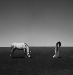 Surreal Self-Portrait Photography by Noell S. Oszvald