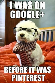 I was on Google+ before it was Pinterest.