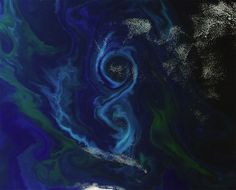 Jan. 14, 2012 -- Its summer in the Southern Hemisphere, when mineral-rich water rises up from the deep ocean to feed phytoplankton near the surface, forming vast blooms in brilliant swirls of blues and greens visible from space.    In this image, taken by ESAs Envisat satellite on Dec. 2 2011, a phytoplankton bloom forms an enormous figure-8 in the southern Atlantic about 370 miles (600 km) east of the Falkland Islands.