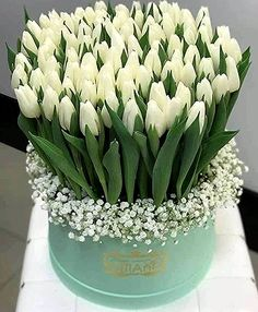 Centerpiece that doubles as gifts for each lady - Beautiful Bouquet Of Flowers, Tulips Flowers, All Flowers, Beautiful Roses, Flowers Garden, White Flowers, Beautiful Flowers, Flower Box Gift, Flower Boxes