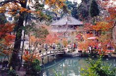 Kyoto Japan. Voted the most beautiful place in the world. I can see and will certainly visit one day...