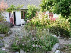 Trädgård - Smygehamn