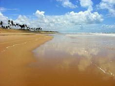 Paradise - Paraíso Costa do Sauipe beach, Bahia, Brasil.