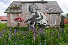 Dolk. making old abandoned houses beautiful again... Borg graffiti art - image by Australian photographer Grant Dixon