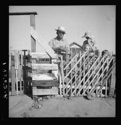 Dorothea Lange Created May 1939 Photogrammar