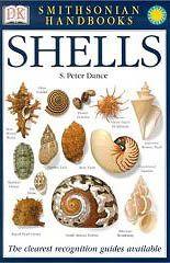 seashell book | Floridas Fabulous Seashells Book