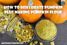 How To Dehydrate Pumpkin Plus Making Pumpkin Flour~AreWeCrazyOrWhat.net