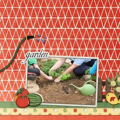 Digital scrapbook layout using How Does Your Garden Grow by Dae Designs. Great vegetable elements and fun bright papers make this digital kit perfect for all your garden scrapping! Vegetable Gardening, Digital Scrapbooking, Layout, Bright, Kit, Vegetables, Paper, How To Make, Ideas
