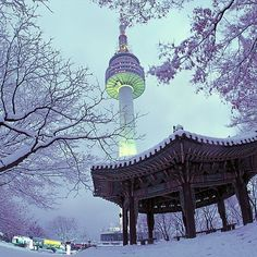 Winter is coming. There are few nicer places to spend it than Seoul, South Korea (just wrap up warm!) #gapsnap #seoul #southkorea #snow #winter #winterwonderland #travel #traveling #travelling #travelgram #instatravel #gapyear #backpacking