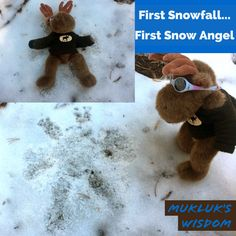 """Mukluk's daily travel wisdom -- pretty wise for a stuffed moose. """"Make a snow angel and smile"""" Snow Angels, First Snow, Moose, Teddy Bear, Wisdom, Smile, Pretty, Travel, Viajes"""