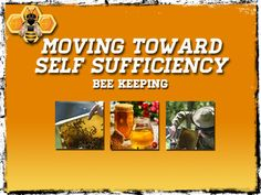 Moving Toward Self Sufficiency: Bee Keeping - Preparing for shtf