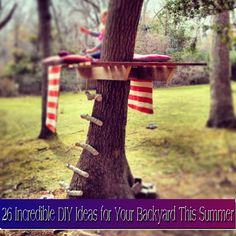 Build a platform on top of old tree stump and attach an umbrella and you have a great reading spot or place to sleep under the stars!!