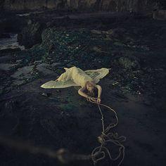 fallen from flight by brookeshaden, via Flickr