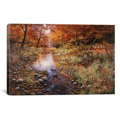 Found it at Wayfair Supply - 'Autumn Gold' by Bill Makinson Photographic Print on Canvas