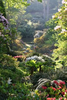 Leonardslee Gardens outside Horsham, West Sussex.