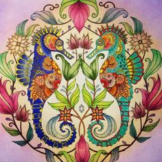 Johanna Basford   Colouring Gallery - Prismacolor Verithins and Scholars Soft Pastels