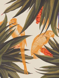 Illustration Design Graphique, Art Et Illustration, Illustrations, Canvas Art Prints, Canvas Wall Art, Art Tropical, Tropical Leaves, Wall Art Wallpaper, Botanical Art