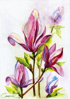 Flowers, Magnolias, Watercolor Original Painting from the Artist #Realism