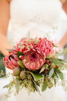 Inspiration and ideas for wedding and bridal flowers. Proteas are a great flower to include in your bridal bouquet and centerpieces. Flor Protea, Protea Bouquet, Protea Flower, Cactus Flower, Tropical Wedding Bouquets, Protea Wedding, Tropical Flowers, Floral Wedding, Gardens