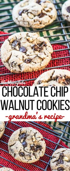 These are my idea of PERFECT chocolate chip cookies! A little crunchy with walnuts. I make these every year for Christmas. Chocolate Chip Walnut Cookies. SO GOOD. #50statesofcookies #ad