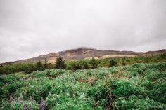 Budardalur Islande blog voyage lovelivetravel