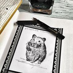 Day 3 #inktober2016 *collect* . Leider sieht der Hamster ein bisschen  aus wie ein Bär, aber was solls! Benutzt habe ich meine Vintage Füllfeder von Waterman aus dem Jahre 1920. Er hat eine flexible Spitze und erlaubt so alle Strichstärken! Gefüllt mit der Edelstein Ink Collection von @pelikan_international ! . #inktober #hamster #inking #drawing #drawingoftheday #drawingchallenge #collect #drawinginspiration #tinte #pelikan #vintage #vintagefountainpen #fountainpen