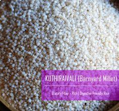 Barnyard Millet / Jhangora / Kuthiravaali / Odalu