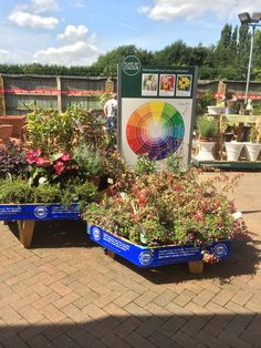 Garden & Leisure Company - Huntingdon - Garden Centre - Lifestyle - Home - Garden - Farm Shop - WHSmith - Layout - Landscape - Customer Journey - Visual Merchandising - www.clearretailgroup.eu
