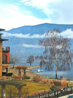 Osoyoos February balconey view.