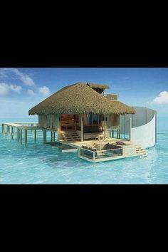 Six Senses Resort located in Laamu, Maldives. Six Senses Resort located in Laamu, Maldives. Six Senses Resort located in Laamu, Maldives. Vacation Places, Dream Vacations, Places To Travel, Vacation Destinations, Honeymoon Places, Dream Vacation Spots, Vacation Ideas, Hawaii Honeymoon, Family Vacations