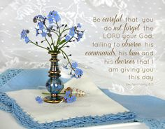 With a Grateful Prayer and a Thankful Heart: Forget-Me-Not