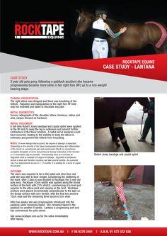 #RocktapeEquine #CaseStudies #Lantana