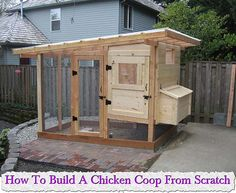 Chicken run 2m x 4m large walk in aviary cattery rabbit for How to make a rabbit hutch from scratch