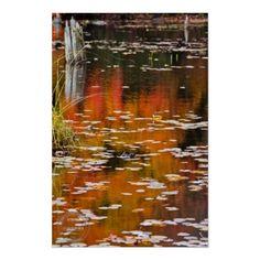 Autumn Marsh Abstract Art Print from Muskoka Ontario for only $52 on demand!