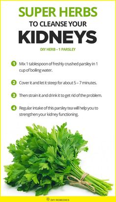 Parsley Herbs to Cleanse the Kidneys    Parsley acts as a natural diuretic that promotes increased urine output which in turn flushes out the bacteria and germs from your kidneys.